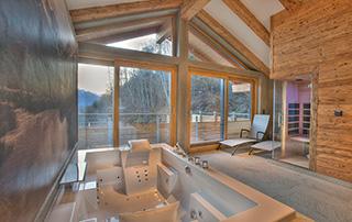 Wellness inclusief jacuzzi, sauna, dampbad, 2 regendouches en prachtig uitzicht